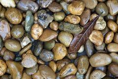 Υγρό υπόβαθρο χαλικιών πετρών Στοκ Εικόνα