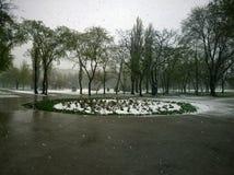 Υγρό χιόνι με τη βροχή τον Απρίλιο Στοκ φωτογραφία με δικαίωμα ελεύθερης χρήσης