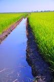 υδάτινη οδός στοκ εικόνες