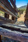 Υδατόπτωση βοοειδών ερήμων στοκ εικόνα με δικαίωμα ελεύθερης χρήσης