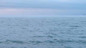 Υδρονέφωση και ομίχλη πέρα από τη θάλασσα Όμορφο seascape με το ρόδινο ηλιοβασίλεμα και τα μπλε σύννεφα ήρεμη θάλασσα φιλμ μικρού μήκους