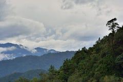 Υδρονέφωση και σύννεφα βουνών στοκ εικόνες
