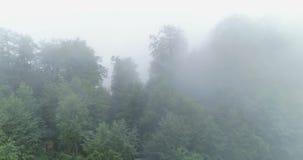 Υδρονέφωση και σύννεφα στη χώρα φιλμ μικρού μήκους