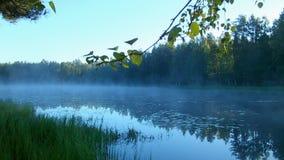 Υδρονέφωση πρωινού πέρα από το νερό στις ακτίνες του ήλιου αύξησης απόθεμα βίντεο