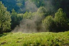 Υδρονέφωση πρωινού που αυξάνεται κάτω από τις πρώτες ακτίνες ήλιων σε ένα λιβάδι στη ρουμανική επαρχία στοκ εικόνες με δικαίωμα ελεύθερης χρήσης