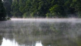 Υδρονέφωση πρωινού στον ποταμό απόθεμα βίντεο