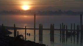 Υδρονέφωση πρωινού στον ποταμό 4K UHD Fraser απόθεμα βίντεο