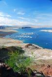 Υδρόμελι λιμνών Στοκ Εικόνες