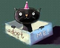 Υιοθετήστε το γατάκι Στοκ εικόνες με δικαίωμα ελεύθερης χρήσης