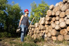 Υλοτόμος με το αλυσιδοπρίονο και τσεκούρι στο δάσος Στοκ Εικόνα
