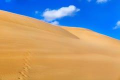 δυναμική υψηλή άμμος σειράς αμμόλοφων Στοκ εικόνα με δικαίωμα ελεύθερης χρήσης