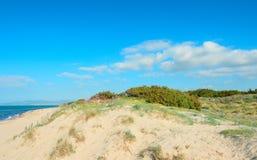 δυναμική υψηλή άμμος σειράς αμμόλοφων Στοκ Φωτογραφίες