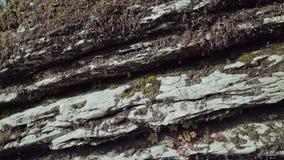Υπάρχει ο βρύο-καλυμμένος σχηματισμός βράχου σε μια κινηματογράφηση σε πρώτο πλάνο φιλμ μικρού μήκους