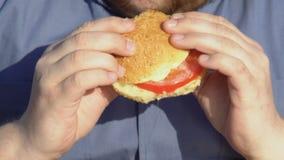 Υπέρβαρο αρσενικό burger υψηλός-θερμίδας μασήματος, γρήγορο φαγητό και πρόβλημα παχυσαρκίας απόθεμα βίντεο