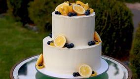 Υπέροχα διακοσμημένο κέικ απόθεμα βίντεο