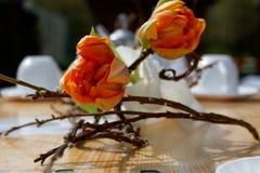 Υπέροχα τοποθετημένος ξύλινος πίνακας με τα λουλούδια και το άσπρο σύνολο καφέ στοκ φωτογραφία