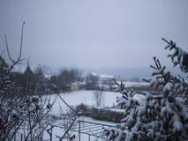 Υπέροχα χιονισμένοι κλάδοι Στοκ φωτογραφίες με δικαίωμα ελεύθερης χρήσης