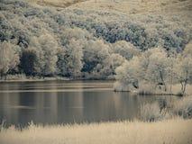 Υπέρυθρη άποψη στην επιφάνεια λιμνών ` s Στοκ Εικόνες