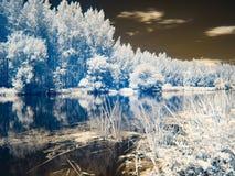 Υπέρυθρη άποψη στις κοίτες πλημμυρών Δούναβη στη Σλοβακία Στοκ εικόνα με δικαίωμα ελεύθερης χρήσης