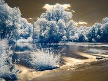 Υπέρυθρη άποψη στις κοίτες πλημμυρών Δούναβη στη Σλοβακία Στοκ Εικόνες