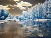 Υπέρυθρη άποψη στις κοίτες πλημμυρών Δούναβη στη Σλοβακία Στοκ Εικόνα
