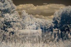 Υπέρυθρη άποψη στις κοίτες πλημμυρών Δούναβη ` s Στοκ Εικόνες