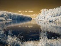 Υπέρυθρη άποψη στις κοίτες πλημμυρών Δούναβη ` s Στοκ φωτογραφίες με δικαίωμα ελεύθερης χρήσης