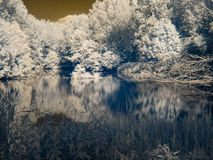 Υπέρυθρη άποψη στις κοίτες πλημμυρών Δούναβη ` s Στοκ φωτογραφία με δικαίωμα ελεύθερης χρήσης