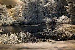 Υπέρυθρη λίμνη με τα σύννεφα στον ουρανό Στοκ Εικόνες