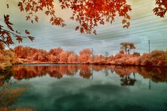 Υπέρυθρη εικόνα μιας λίμνης Στοκ Φωτογραφία