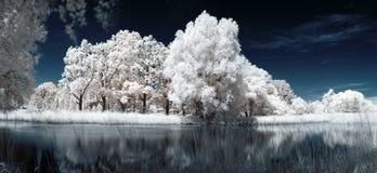 υπέρυθρη λίμνη Στοκ Εικόνες