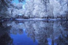 Υπέρυθρο τοπίο και λεπτομέρειες Στοκ εικόνα με δικαίωμα ελεύθερης χρήσης