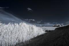 Υπέρυθρο τοπίο με τις σκιές Στοκ φωτογραφία με δικαίωμα ελεύθερης χρήσης