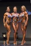 Υπέρ διεθνής κάτοχος μετάλλιο Threesome αριθμού Στοκ Εικόνα