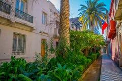 Υπαίθρια άποψη του πανέμορφου κήπου με τις εγκαταστάσεις και τους φοίνικες μεταξύ των κτηρίων στο Barrio Yungay στο Σαντιάγο, κεφ στοκ φωτογραφία με δικαίωμα ελεύθερης χρήσης