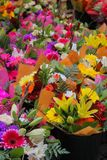 Υπαίθρια αγορά που πωλεί τα διαφορετικά ζωηρόχρωμα λουλούδια στη Στοκχόλμη, στοκ εικόνες