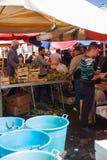 Υπαίθρια αγορά φρούτων, Κατάνια Στοκ Εικόνες