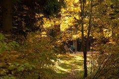 υπαίθρια αναψυχή μεσημερ& Στοκ φωτογραφία με δικαίωμα ελεύθερης χρήσης