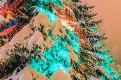 Υπαίθρια διακοσμήσεις Χριστουγέννων σε ένα πράσινο χιονισμένο δέντρο έλατου με το χρωματισμένο φωτισμό των οδηγήσεων Στοκ Εικόνα