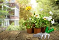 υπαίθρια θερινή εργασία κηπουρικής εξοπλισμού Στοκ φωτογραφίες με δικαίωμα ελεύθερης χρήσης