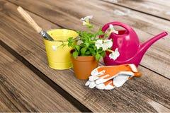 υπαίθρια θερινή εργασία κηπουρικής εξοπλισμού Στοκ Εικόνα