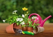 υπαίθρια θερινή εργασία κηπουρικής εξοπλισμού Στοκ εικόνα με δικαίωμα ελεύθερης χρήσης