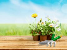 υπαίθρια θερινή εργασία κηπουρικής εξοπλισμού Στοκ εικόνες με δικαίωμα ελεύθερης χρήσης