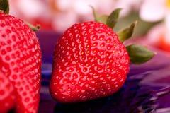 υπαίθρια φράουλα στοκ εικόνες