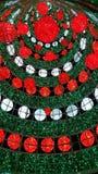 Υπαίθριο γιγαντιαίο χριστουγεννιάτικο δέντρο Στοκ Φωτογραφία