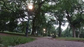 Υπαίθριο ηλιοβασίλεμα ανατολής πάρκων με τα δέντρα φωτεινών σηματοδοτών πόλεων στοκ εικόνα