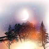Υπαίθριο διανυσματικό υπόβαθρο με τα δέντρα και τον έναστρο ουρανό Στοκ Φωτογραφίες