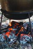 Υπαίθριο μαγείρεμα σε ένα κύπελλο του ανοξείδωτου πέρα από μια καίγοντας πυρκαγιά Στοκ εικόνα με δικαίωμα ελεύθερης χρήσης
