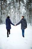 Υπαίθριο πίσω πορτρέτο άποψης του εύθυμου ατόμου και του όμορφου κοριτσιού που απολαμβάνουν τις χιονοπτώσεις στο χειμερινό δάσος Στοκ Εικόνα