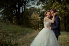 υπαίθριο πορτρέτο ρομαντ&io Μοντέρνος ελκυστικός το ζεύγος αγκαλιάζει και η πανέμορφη νύφη κτυπά μαλακά το νεόνυμφο στοκ εικόνα με δικαίωμα ελεύθερης χρήσης